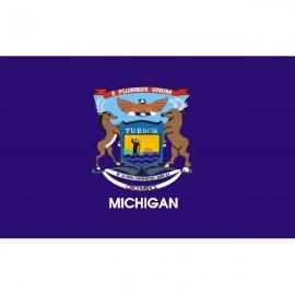 Drapeau USA Michigan