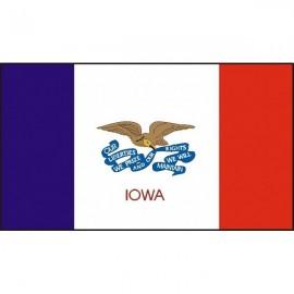 Drapeau USA Iowa