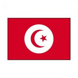Drapeau USA Tunisie