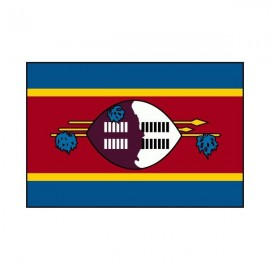 Drapeau USA Swaziland