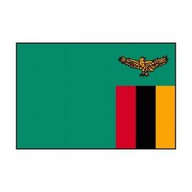 Drapeau USA Zambie
