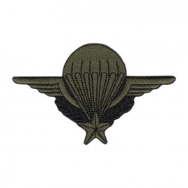 Badge brevet Parachutisme